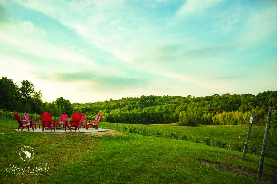 Black Bear Vineyard View of Patio and Adirondack Chairs